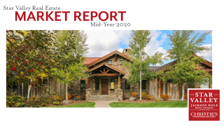 Mid-Year 2020 Market Report